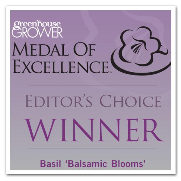 Basil Balsamic Blooms