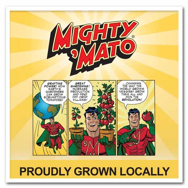 Tomato – Mighty 'Matos Grafted Tomato