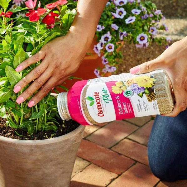All Purpose Slow Release Fertilizer Lasts 6-Months Outdoor and Indoor Plus Osmocote