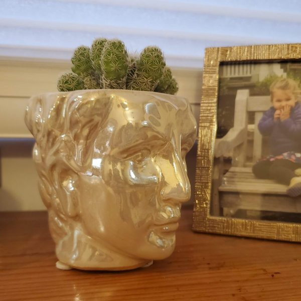 David Head Pot Pearly White