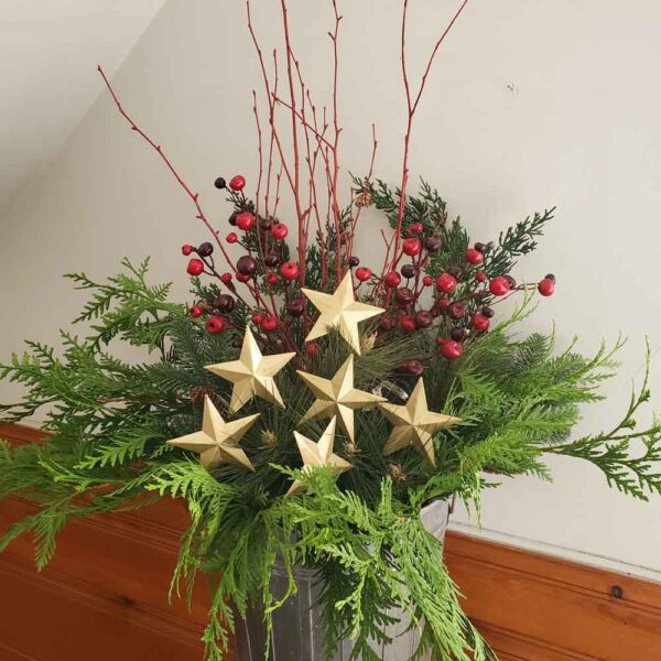 Ornament Star Pick – Gold