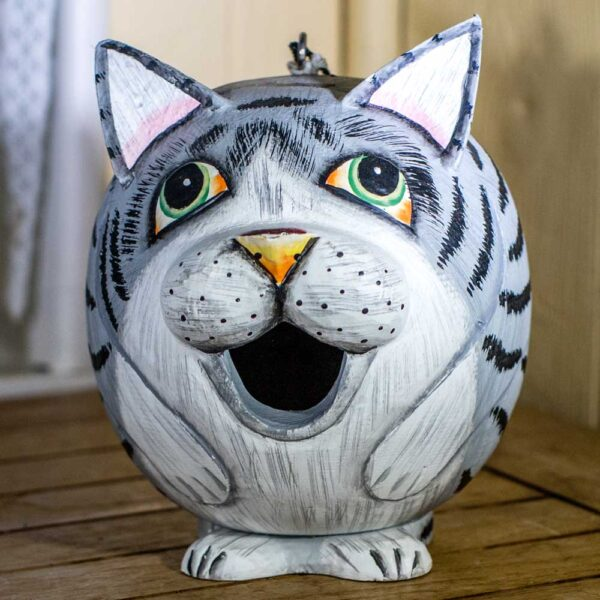 Birdhouse Grey Tabby Cat