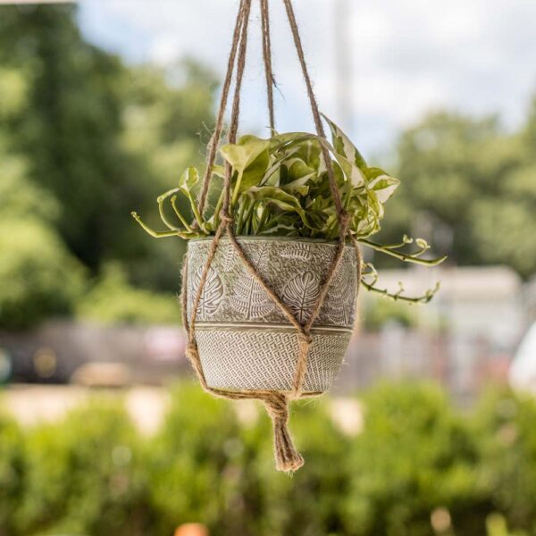 ot Hanging Fern Pot Green