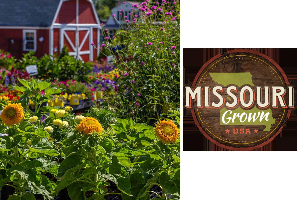 Missouri Grown Plant Nursery In St Louis