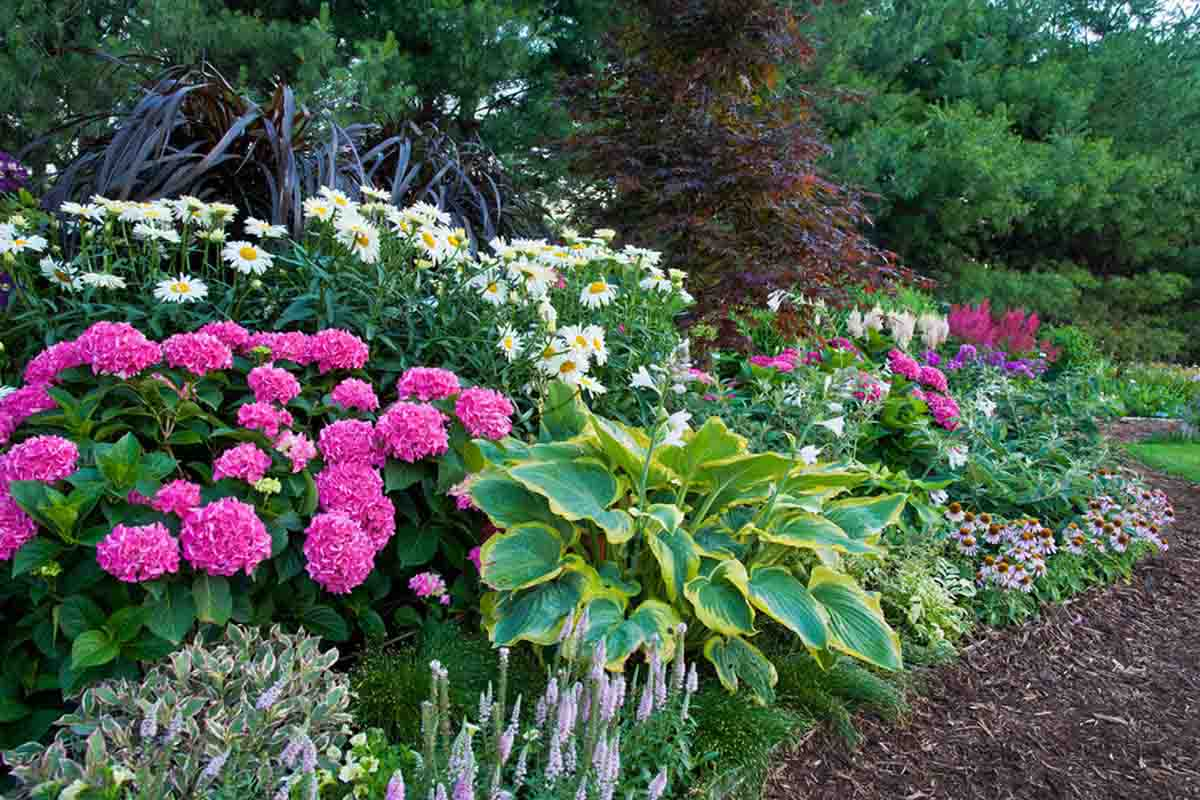 St Louis Landscape Company Sugar Creek Gardens