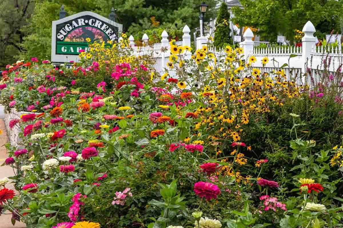 Sugar Creek Gardens St Louis Garden Center