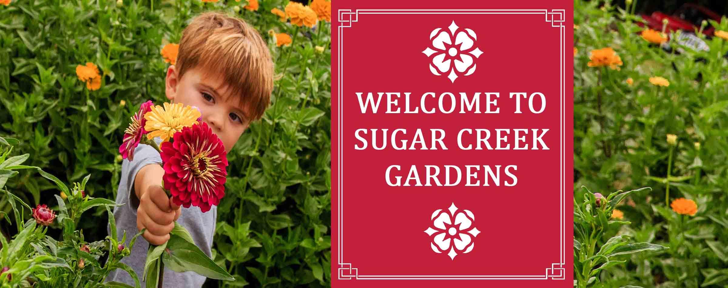 Sugar Creek Gardens St Louis Plant Nursery Garden Center