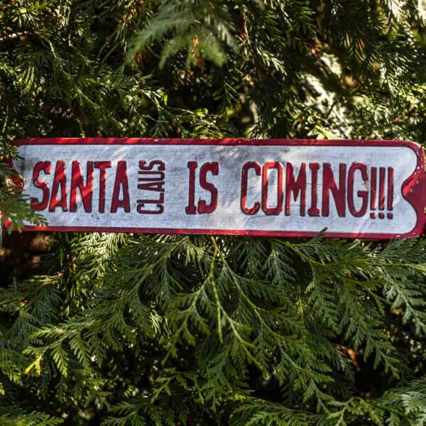Holiday Sign St Louis Plant Shop Santa is coming