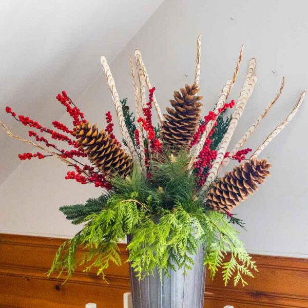 Pine Cone – Sugar Pine Cone on 24″ Stick Natural
