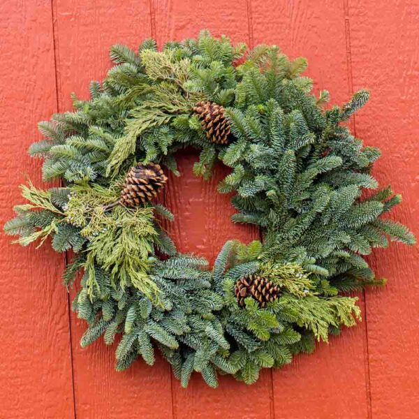 Fresh cut Evergreen Wreath Medium
