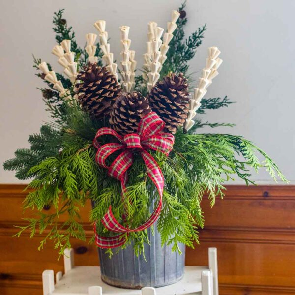 Holiday Container with Jeffery Pine Cones natural