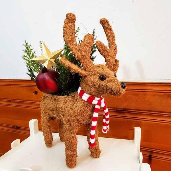 Planter Reindeer Coco Coir