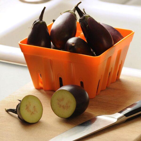 Eggplant Patio Baby