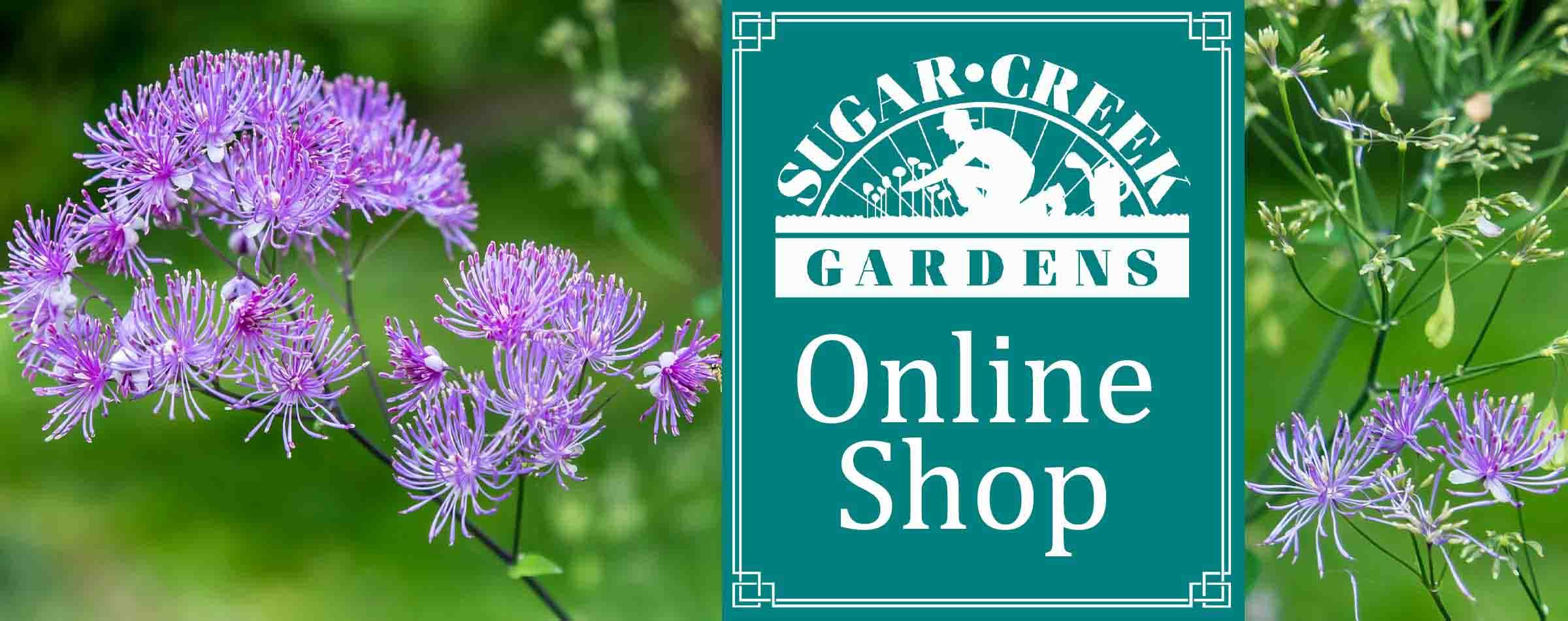 Sugar Creek Gardens online shop