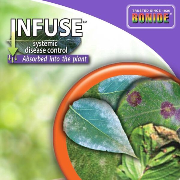 Infuse Fungicide Concentrate 16 oz